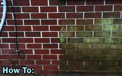 Exterior Brick Cleaning